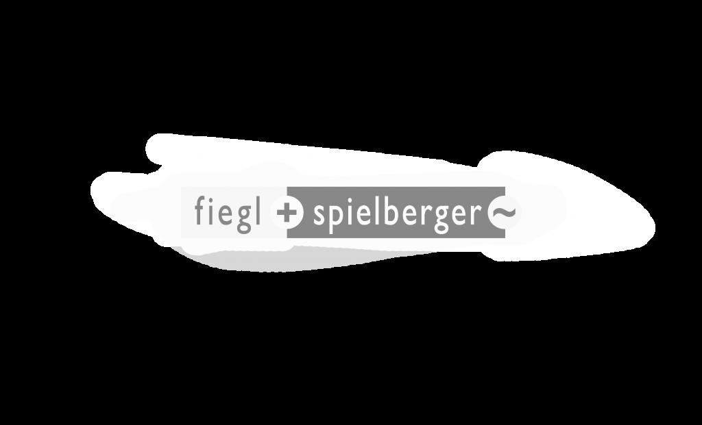 FIEGL + SPIELBERGER